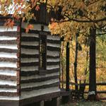 cabin_falloutside