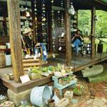cabin_springporch