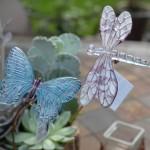 gabriele dragonfly